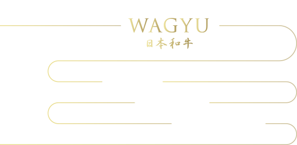 The secret behind the deliciousness of WAGYU 日本和牛 1.Texture 2.Oleic acid 3.WAGYU Aroma