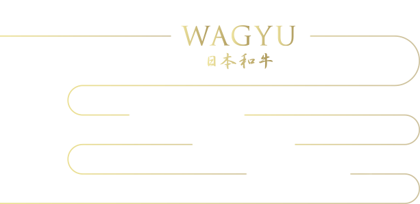 The secret behind the deliciousness of WAGYU 日本和牛 1.口感(肉質) 2.油酸 3.和牛的香氣