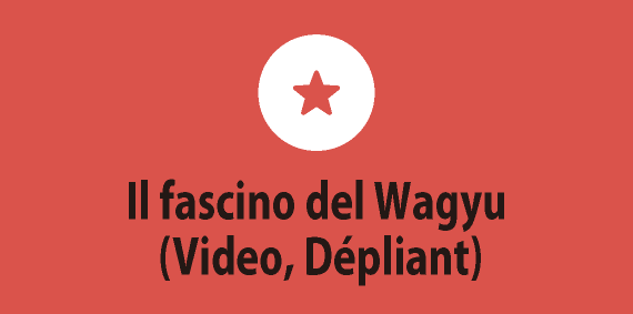Il fascino del Wagyu (Video, Dépliant)